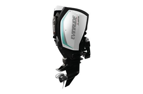 2019 Evinrude 250 H.O. - H250LH Photo 1 of 1