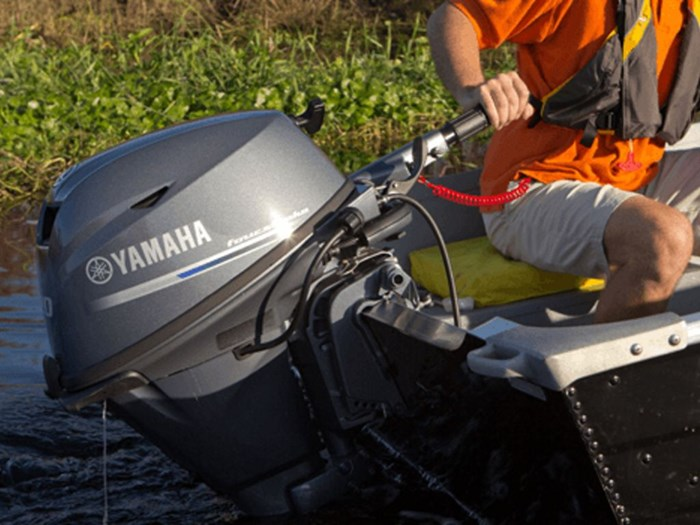 2019 Yamaha F20, Commercial Discounts Available Photo 4 of 5