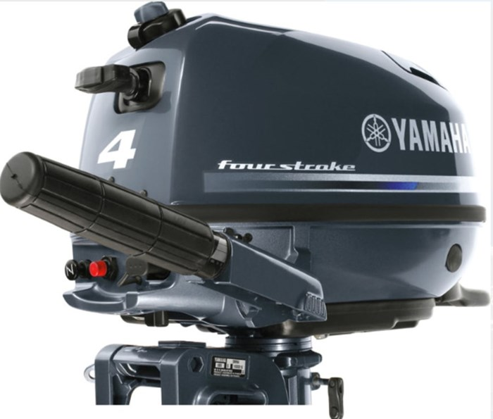 2020 Yamaha 4,2.5 Photo 1 sur 3