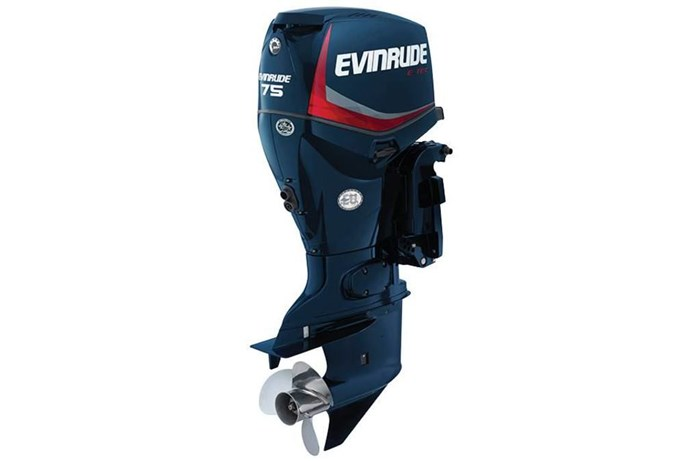 2014 Evinrude Inline 75-HP E75DPL Photo 1 of 1