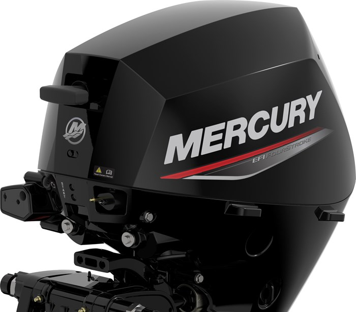 2021 Mercury 20 MLH EFI 4-Stroke Photo 3 of 3