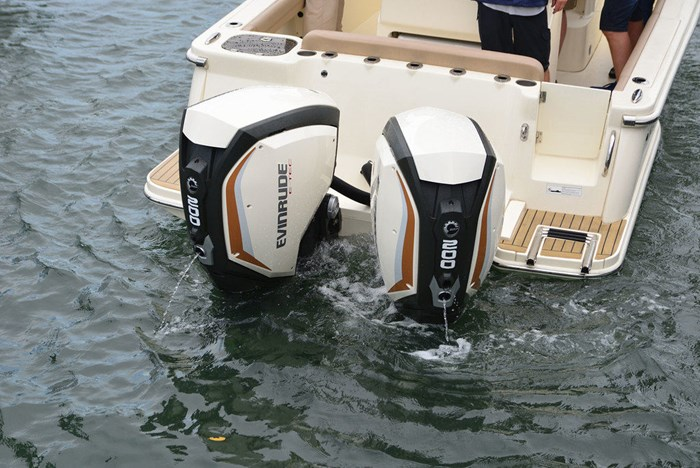 2020 Evinrude Twin 200 iDock Package Photo 1 sur 5