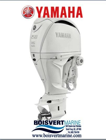 2022 Yamaha GRANDE PUISSANCE F250B Photo 1 of 1